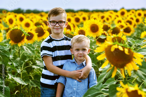 Foto Murales Funny boys in the field with sunflowers . Brothers play outdoors
