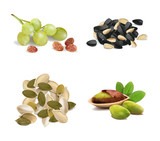 Set of pistachios, seeds, pumpkin seeds, raisins from grapes on a white background. Vector illustration. - 223142229