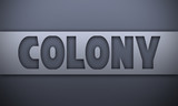 colony - word on silver background - 223144055