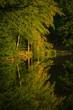 Leinwanddruck Bild - Bäume Spiegelreflexion im Wasser