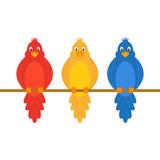 colorful amusing parrots