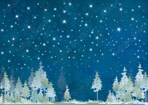 Wektorowej zimy nocy gwiaździsty nieba i lasu tło.