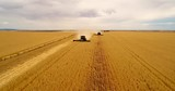 Two harvesters coming down the fence line in Australian wheat - 223220804