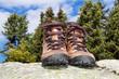 Leinwandbild Motiv walking shoes