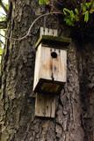 Drewniany domek dla ptaków