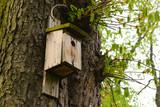 Stara budka dla ptaków w parku - 223239473