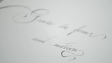 Pull focus on a quote wrote in calligrapher. - 223253419