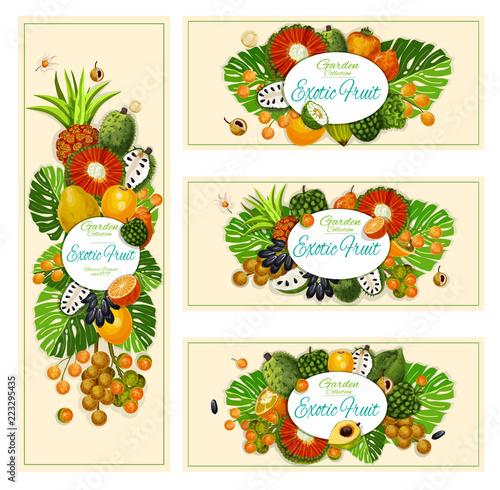 Egzotyczne owoce tropikalne zbiory banerów