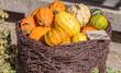 Leinwanddruck Bild - Zierkürbisse Herbstliche Deko