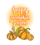 Season Background. Greeting card with Ink hand drawn pumpkins. Autumn harvest elements composition with brush calligraphy style lettering. Vector illustration. - 223343280