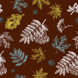 Decorative seamless pattern with Ink hand drawn autumn maple, chestnut, oak leaves and a bunch of rowanberry.  Botanical elements texture for your design. Vector illustration. - 223343866