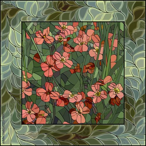 vector-illustration-of-flowers-aubrieta