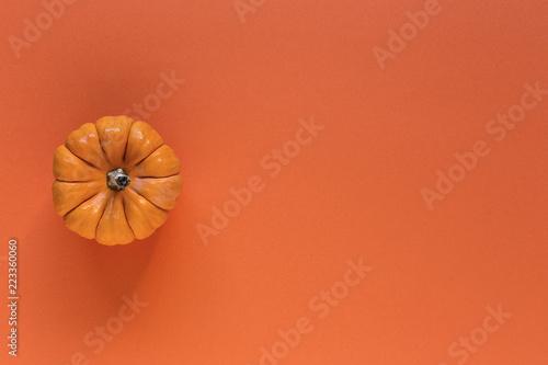 Halloween decoration background. pumpkins - 223360060