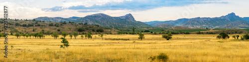 панорама степного пейзажа горами на горизонте, Крым - 223402877