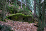 Old military bunker with moss - 223408089