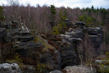 A view of the spring sandstone rocks - 223408257