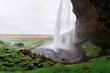 Seljalandsfoss - picturesque and majestic waterfall, Iceland - 223409058
