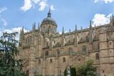Catedral nueva de Salamanca, España  - 223421644