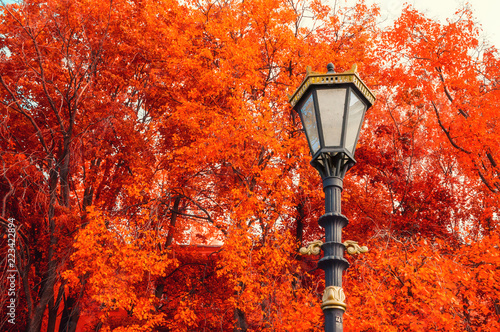 Fall background. Metal lantern on the background of the fall trees - 223422894