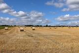 Strohballen auf einem Getreidefeld - 223431696