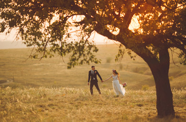 groom and bride in a wedding dress going through the field on a background of  sunset.