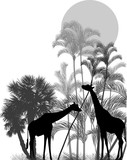 giraffes near grey palm trees isolated on white - 223504063