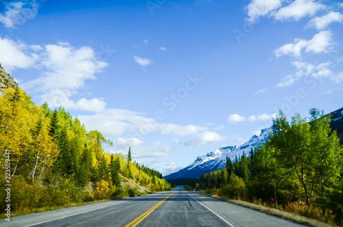 秋のカナディアンロッキー 夕方のアイスフィールド・パークウェイ[黄葉あり、車なし](カナダ・アルバータ州)