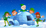 Christmas elf in winter background - 223515017