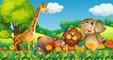 Wild animals in the forest - 223518661