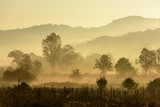 Magical autumn landscape with sun rays in the morning. Vintage landscapes. No efect filter. - 223530836