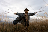 Scary scarecrow in a hat on a cornfield in cloudy sky background. Halloween holiday concept - 223533059