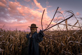 Scary scarecrow in a hat on a cornfield in orange sunset background. Halloween holiday concept - 223533261