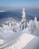 Fantastic winter landscape with snowy trees. Carpathian mountains, Ukraine, Europe. Christmas holiday concept - 223535414