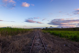 railway in the countryside - 223549424