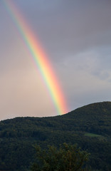 Rainbow after the rain,vertical image