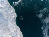 Grönland   Luftaufnahme - 223674056