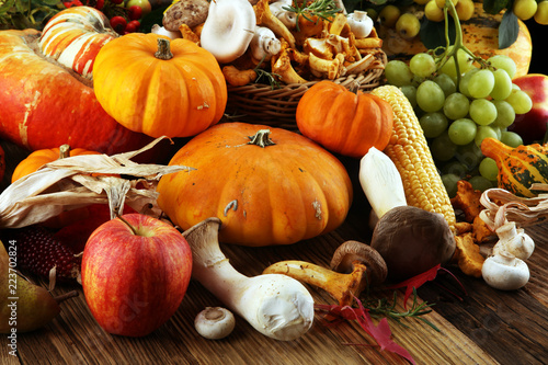 Autumn nature concept. Fall fruit and vegetables on wood. Thanksgiving dinner - 223702824