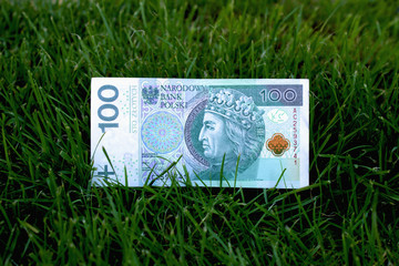 Polish zloty in the grass