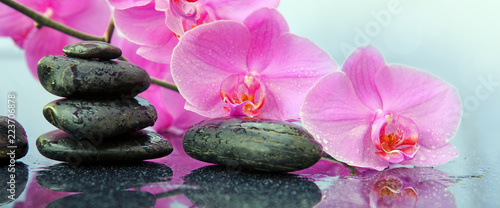 canvas print picture Pink orchids flowers and spa stones . Spa background.