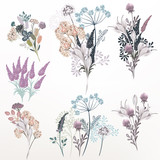 Collection of vector flower composition for design - 223712086