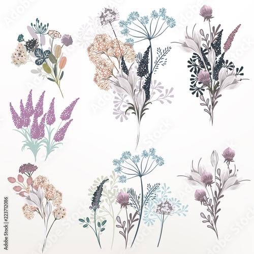 kolekcja-wektora-kwiat-sklad-dla-projektu