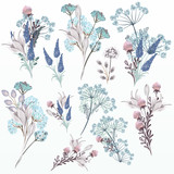 Collection of vector floral watercolors in soft colors - 223713071