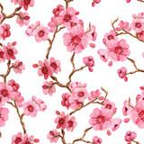 Seamles pattern with sakura