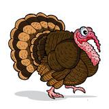 Turkey Thanksgiving - Hand Drawing Illustration - Digital Coloring - Vector Eps 10