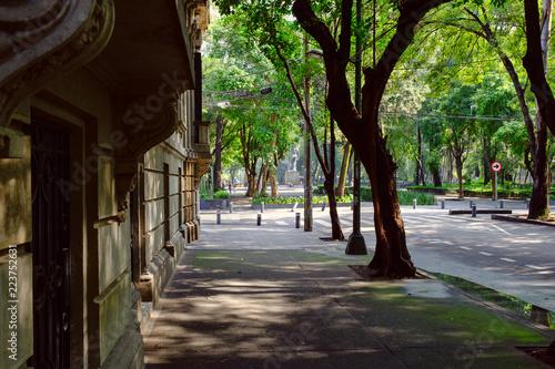 obraz PCV Street at Roma Norte, a fashionable neighborhood in Mexico City