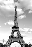 Eiffel Tower with black and white effect in Paris France © ChiccoDodiFC