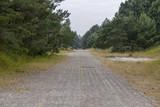 Leśna wojskowa droga - 223829461