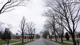 Zentralfriedhof in Wien, Österreich - 223843450