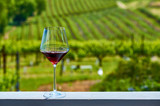 Glass of red wine and vineyards - 223868027