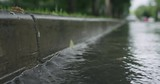 Slow motion of water streams on the street after rain - 223910831